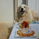 Chanelle fête ses 11 ans