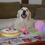 Chanelle 10ème anniversaire