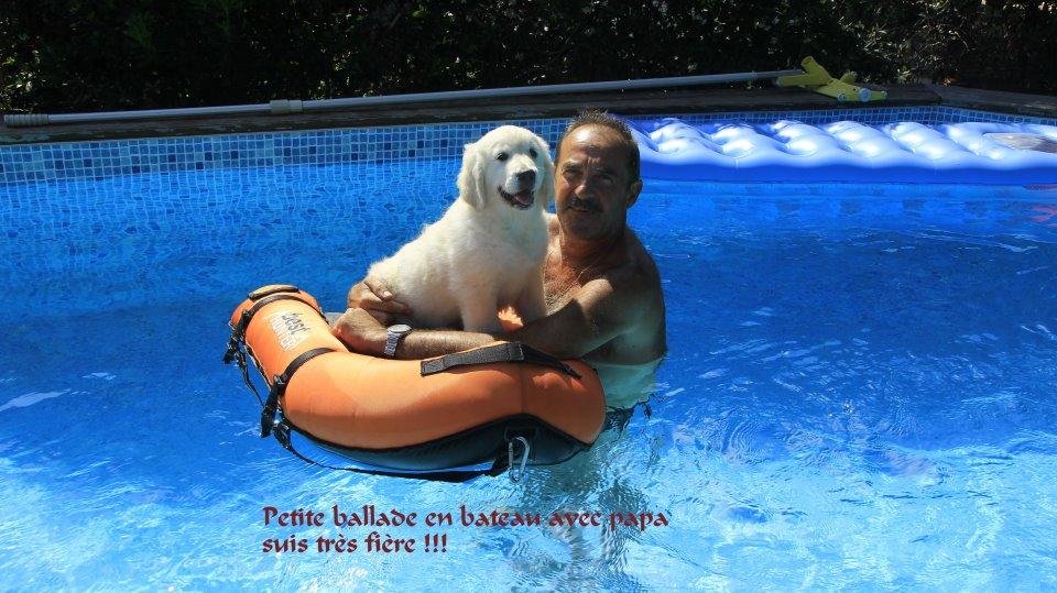 lexie 11 semaines piscine