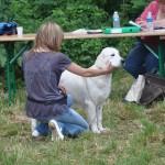 """Eternal For My Doll of Deep Dreamer's """"Tess"""", Best Puppy, Ventabren, juin 2010."""