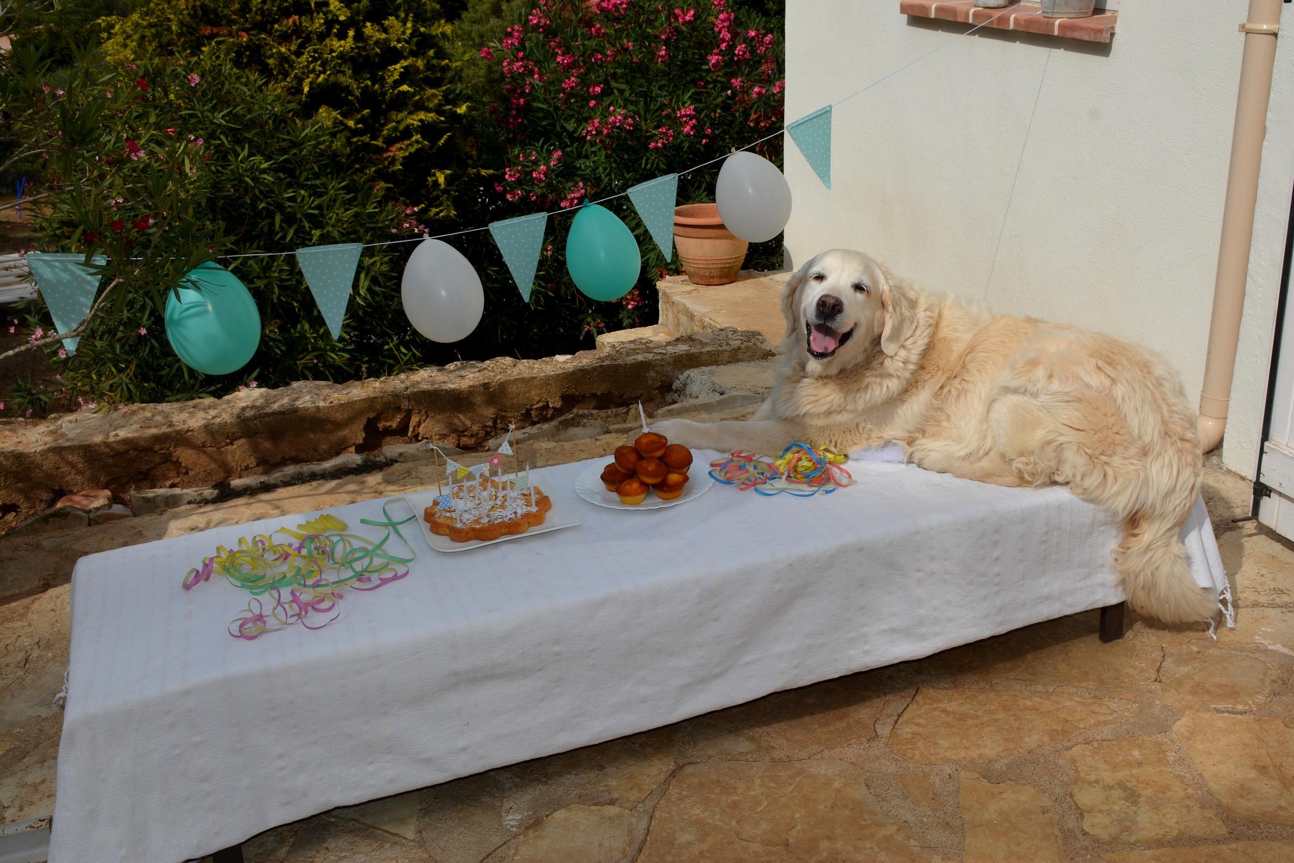 Chou table 1