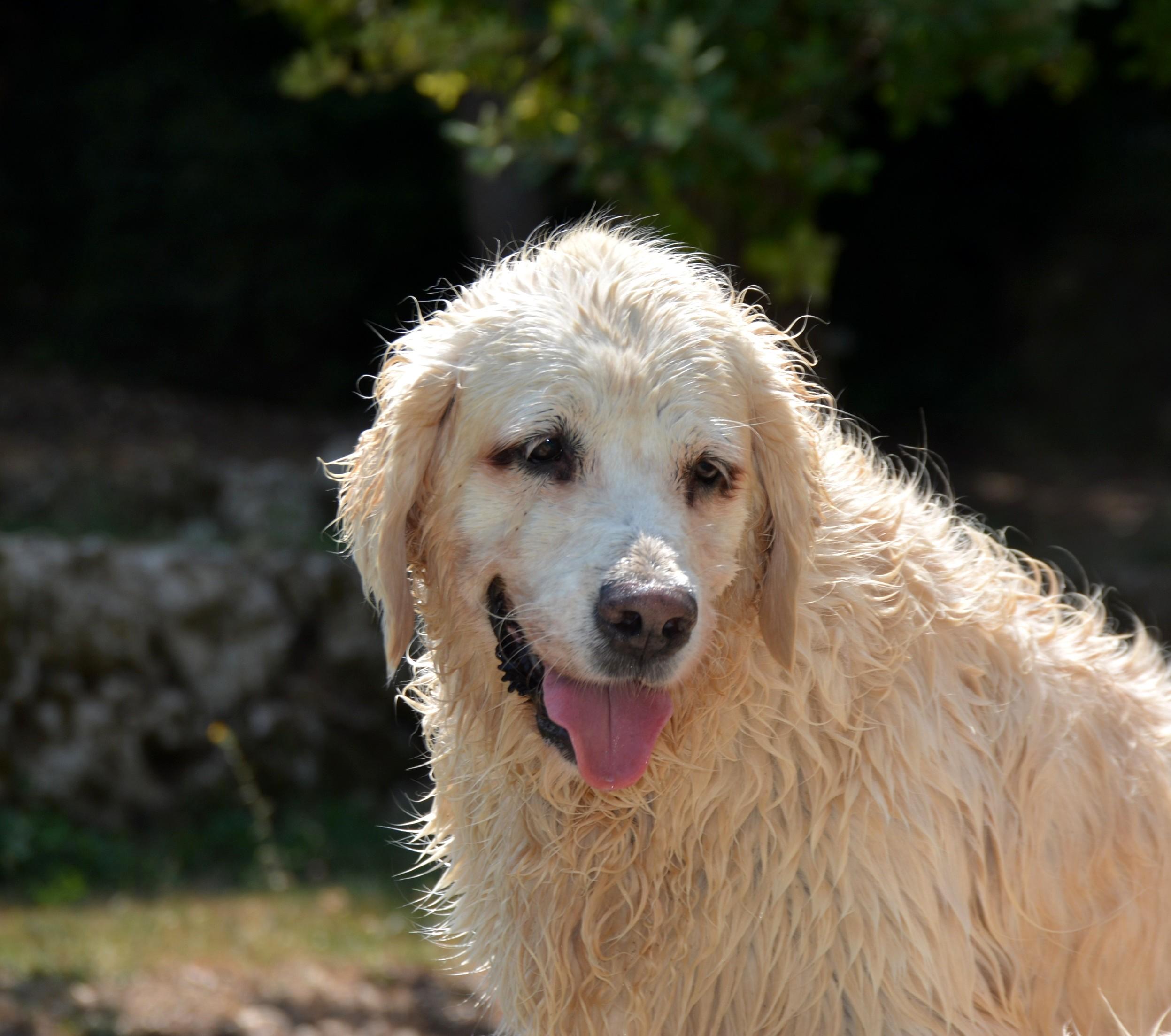 Lou piscine 8 ans