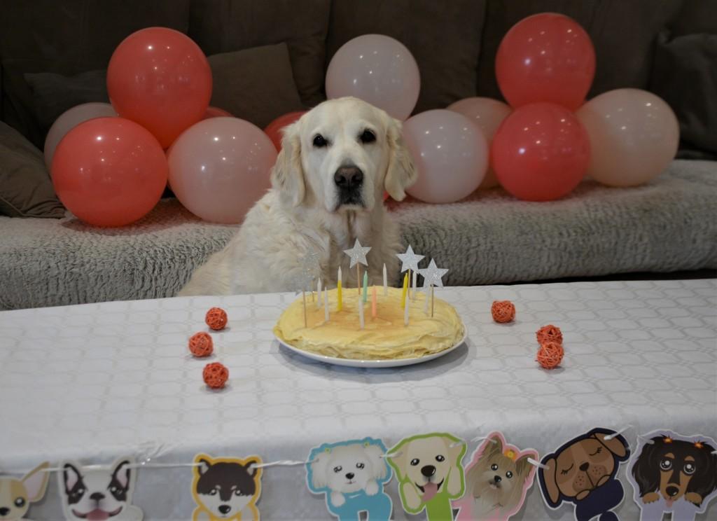 Lola pose anniversaire 1