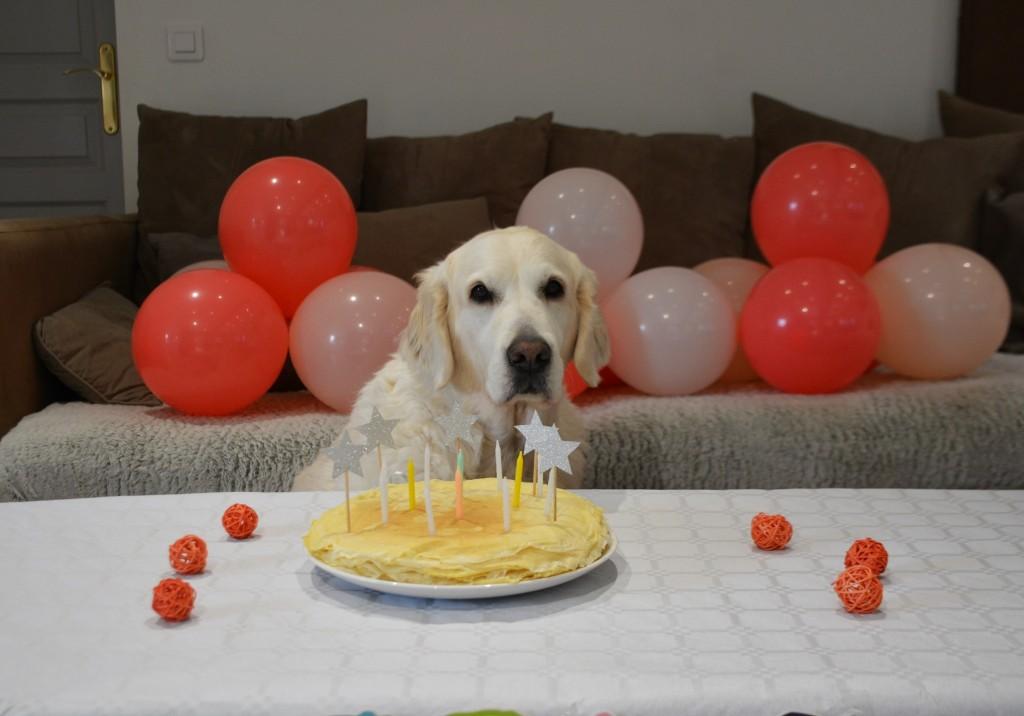 Lola pose anniversaire 6